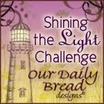 ODBD Shining the Light Award