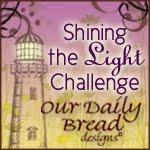 ODBD Shining the Light Award